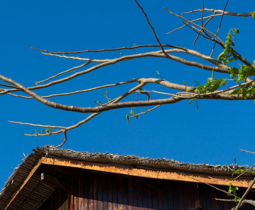 Particolare del tetto della villa In A Gadda Da Vida